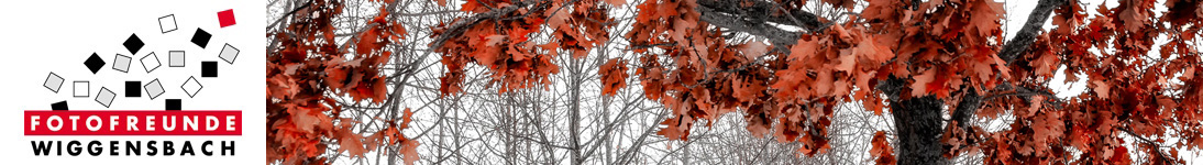 banner_hilbrich-christine_01-18-03-13.jpg