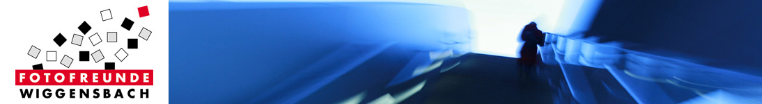 banner_pfleiderer-thomas_03-28-01-12.jpg