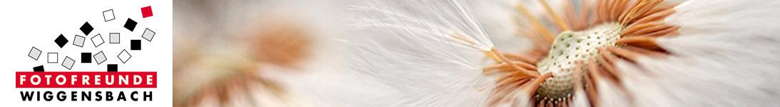 banner_wendl-christine_06-13-01-15.jpg