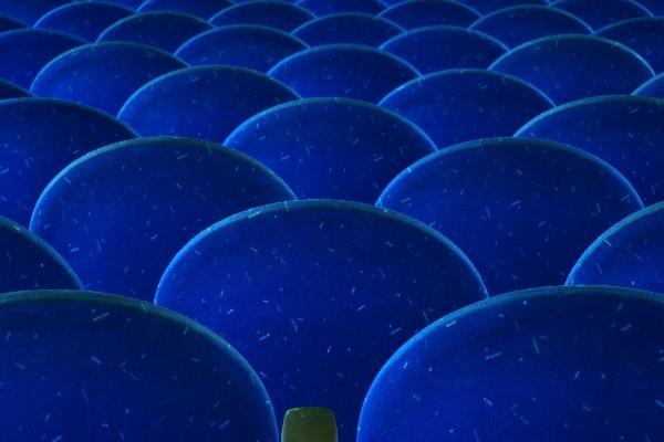 09 - 00254_0106_Vernissage