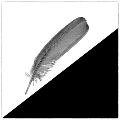 zufall_koehler-manfred_09.jpg
