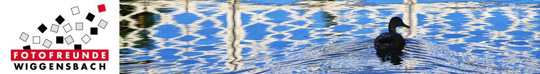 banner_koehler-manfred_21-06-12-01.jpg